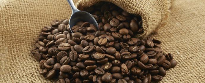コーヒーの卸売りサービス